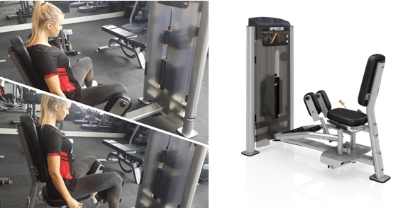 Hammer's Gym's All New Adductor/Abductor Plus Workout Guide 3