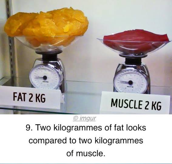Does my weight matter in the first stages of a new training routine? 8